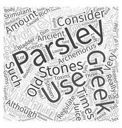 Parsley Word Cloud Concept vector