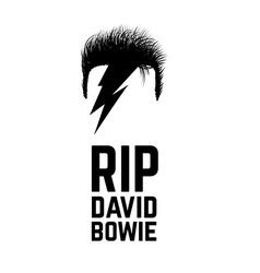 rip David Bowie vector image