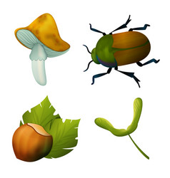 Set of forest icons mushroom beetle hazelnut vector
