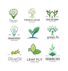 set tree logo vector image