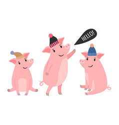 three piggy in winter hats vector image