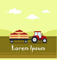 flat red tractor with a cart tomato the vector image