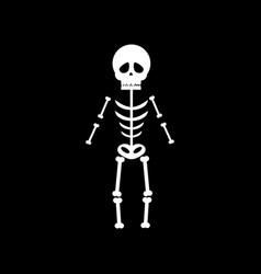 skeleton halloween vector image vector image