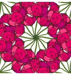 decorative poppy flowers seamless pattern vector image