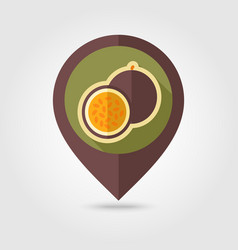 Passionfruit flat pin map icon tropical fruit vector