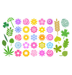 big set flowers and leaves in simple cartoon vector image
