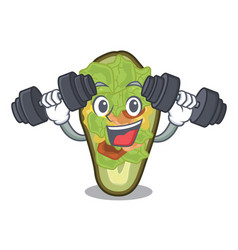 Fitness stuffed avocado isolated with cartoon vector