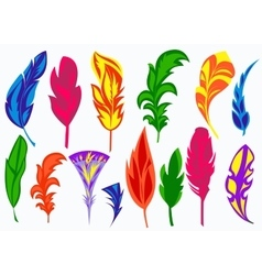 Set isolated colored feathers vector image