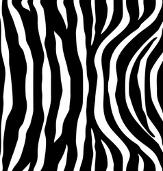 Zebra Stripes black white Seamless Pattern vector image