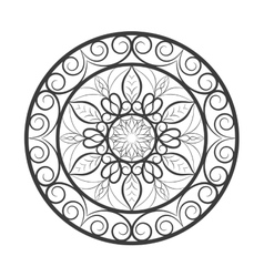 Flower mandala over white vector image vector image