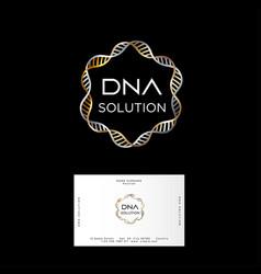 Dna solution logo gold silver spiral business card vector