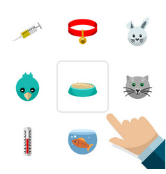 Flat icon pets set of feeding temperature vector
