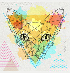hipster polygonal animal sphynx cat vector image