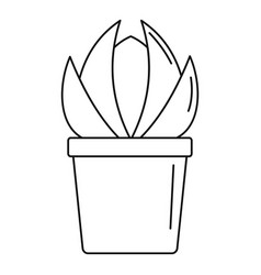 House cactus pot icon outline style vector