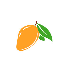 mango tropical juicy fruit isolated vector image