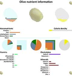 Olive nutrient information vector