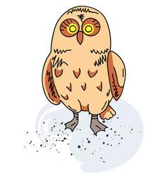owl cartoon hand drawn image vector image