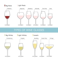 types of wine glasses vector image