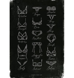 underwear poster classic chalk vector image