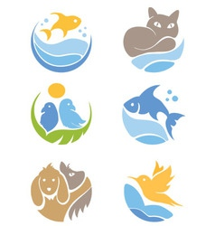 A set of icons - pets vector