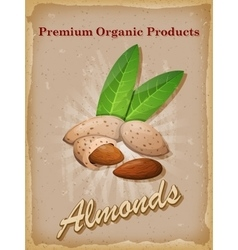 Almonds vintage poster vector