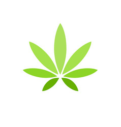 Cannabis leaf on white background logo illegal vector
