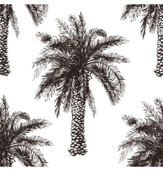 Hand drawn palm tree seamless vector