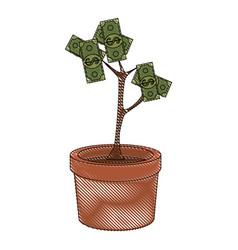Money plant symbol vector