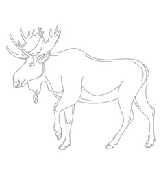 Moose lining draw profile vector