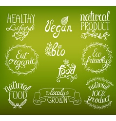 natural food hand written vector image