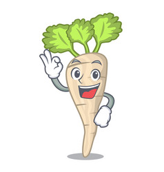 okay parsnip isolated on the cartoon style vector image
