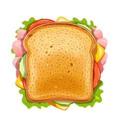 sandwich fried bread vector image