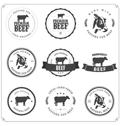 Set of premium beef labels and badges vector
