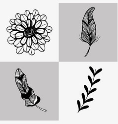 set rustic flowers with leaf and branches and vector image