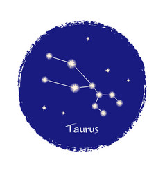 taurus zodiac constellation sign on dark vector image