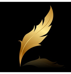 golden feather on black vector image vector image