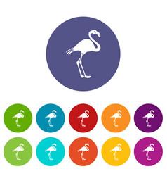 flamingo set icons vector image