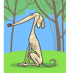 greyhound dog cartoon vector image