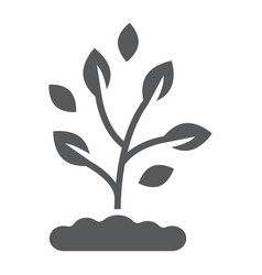 plant glyph icon farming and agriculture vector image