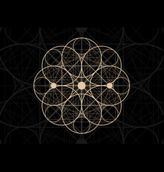 seed life symbol sacred geometry vintage icon vector image