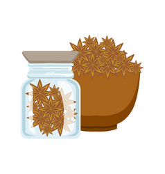 Stars anise in a brown bowl and glass jar vector