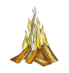 Traditional burning bonfire color vector