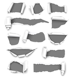 Torn gray paper vector image vector image