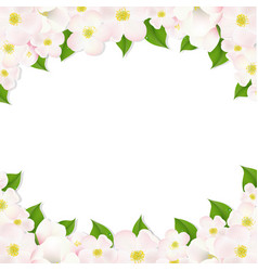 apple flowers border vector image