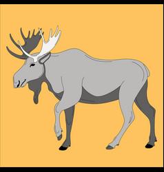 moose flat style profile vector image
