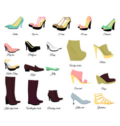 Big shoes set vector