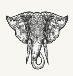 Elephant head entangle vector