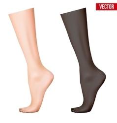 Human legs vector image