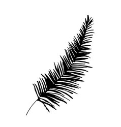 palm tree twig silhouette vector image