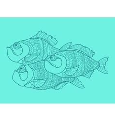 Piranha color drawing vector image
